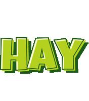 Hay summer logo