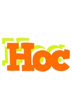 Hoc healthy logo
