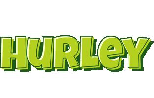Hurley summer logo
