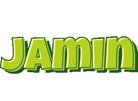 Jamin summer logo