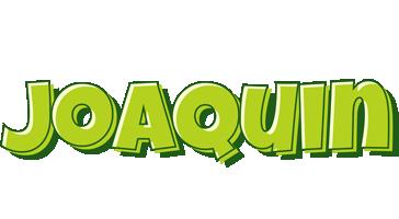 Joaquin summer logo