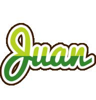 Juan golfing logo
