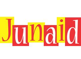 Junaid errors logo