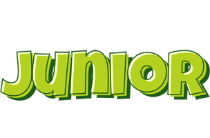 Junior summer logo