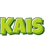Kais summer logo
