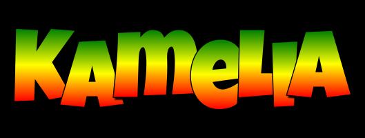 Kamelia mango logo
