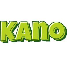 Kano summer logo