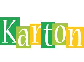 Karton lemonade logo