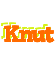 Knut healthy logo