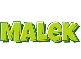 Malek summer logo