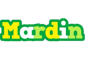 Mardin soccer logo