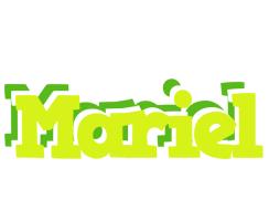 Mariel citrus logo