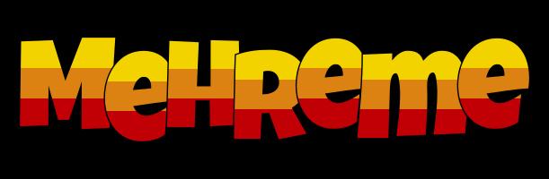 Mehreme jungle logo