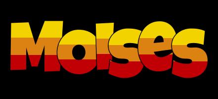 Moises jungle logo
