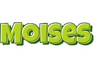 Moises summer logo