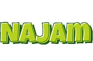 Najam summer logo