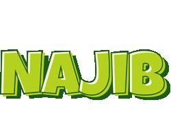 Najib summer logo