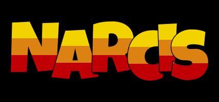 Narcis jungle logo