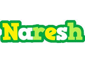 Naresh soccer logo