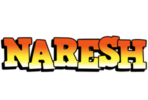 Naresh sunset logo