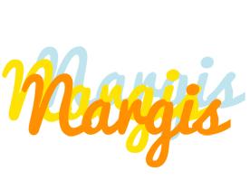 Nargis energy logo