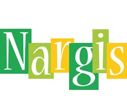 Nargis lemonade logo