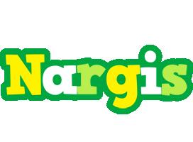 Nargis soccer logo