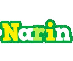 Narin soccer logo