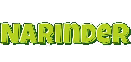Narinder summer logo