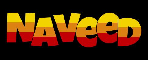 Naveed jungle logo