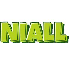 Niall summer logo