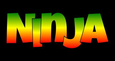 Ninja mango logo