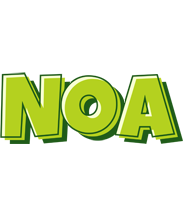 Noa summer logo