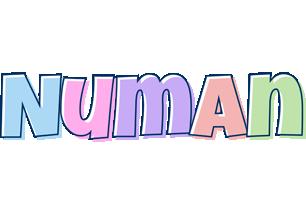 Numan pastel logo