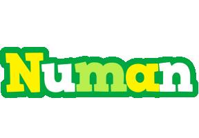 Numan soccer logo
