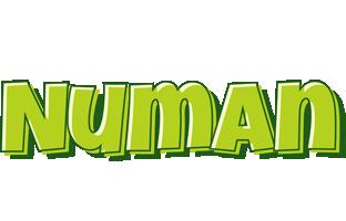 Numan summer logo