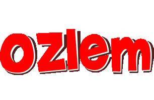 Ozlem basket logo