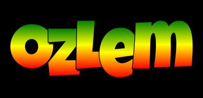 Ozlem mango logo