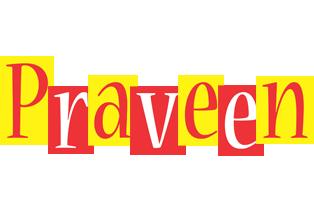 Praveen errors logo
