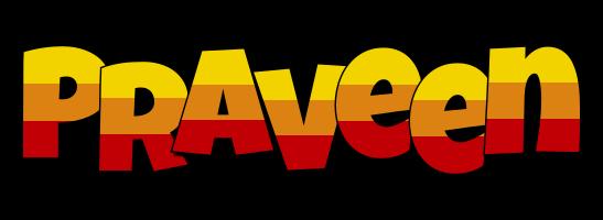 Praveen jungle logo