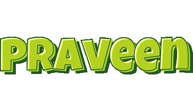 Praveen summer logo