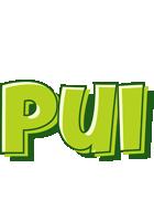 Pui summer logo
