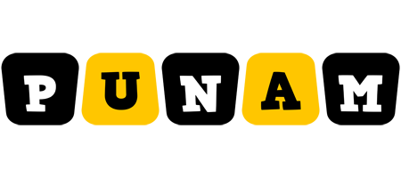 Punam boots logo