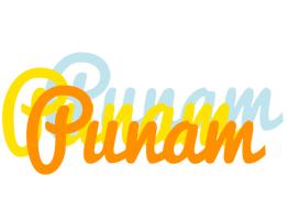 Punam energy logo