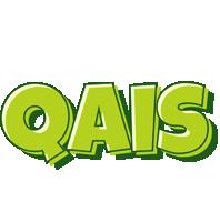 Qais summer logo