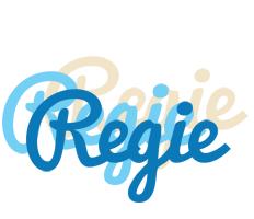 Regie breeze logo