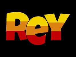 Rey jungle logo