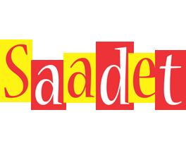 Saadet errors logo