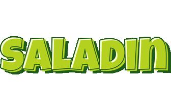 Saladin summer logo