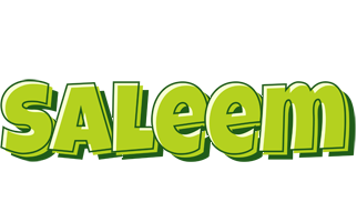 Saleem summer logo